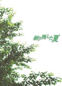 映画DVD「剃り残した夏」