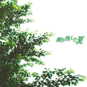 映画「剃り残した夏」オリジナルサウンドトラックCD