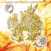 「Autumn EP 2011 ~L'Autunno~」(初回限定盤B)
