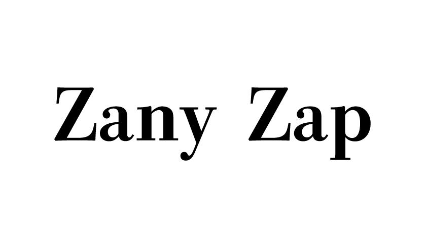 Zany Zap
