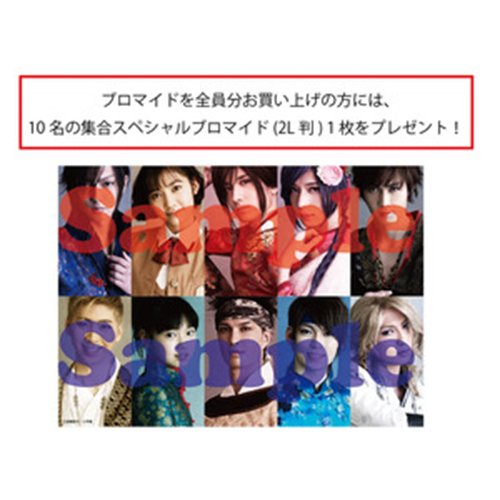 2 sheets Bromide 10 people set (Aggregate Special Bromide (2 L size) with 1 gift)